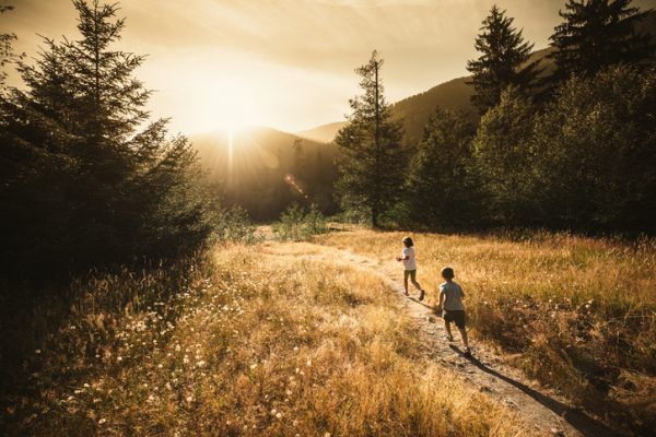 Des enfants courent dans une prairie, vers le soleil